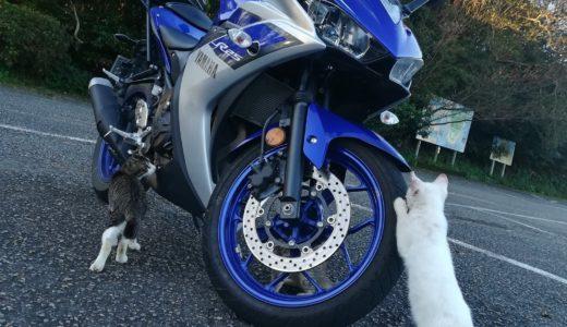 【ニャマハ】3匹のかわいい猫整備士によるタイヤ回り点検の動画が癒される!